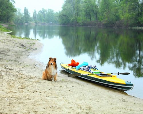 Подробнее: На байдарках по рекам Украины